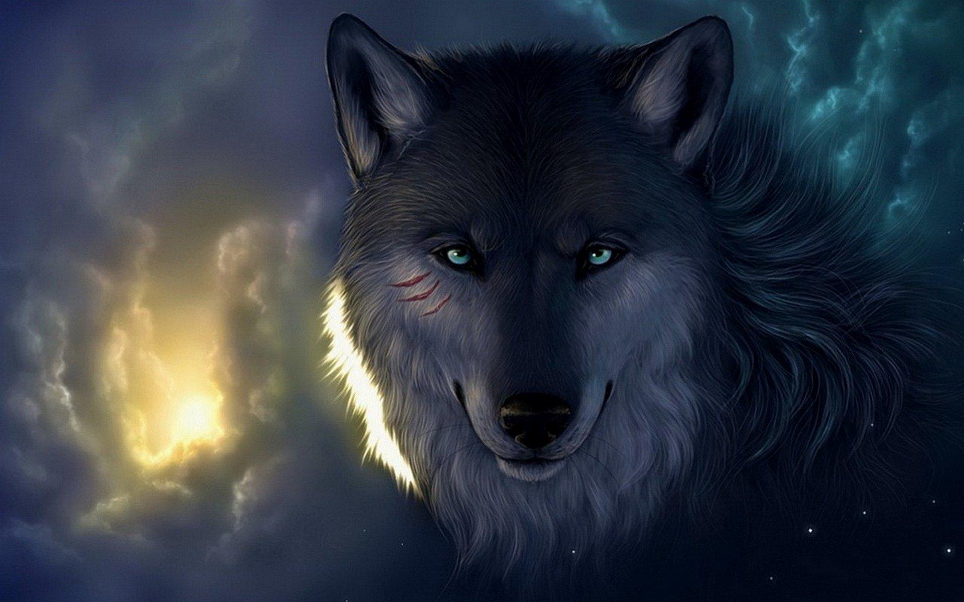 Lobo Papel De Parede HD