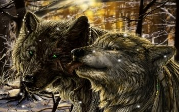 Animal - Wolf Wallpapers and Backgrounds ID : 345973