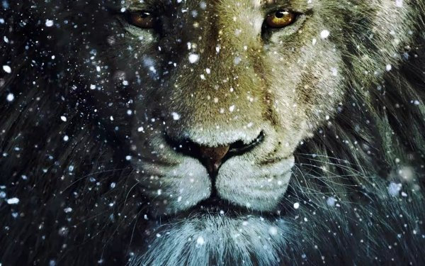 Movie The Chronicles of Narnia: The Voyage of the Dawn Treader Narnia Lion Dawn HD Wallpaper | Background Image