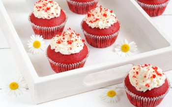 Alimento - Cupcake Wallpapers and Backgrounds ID : 346891