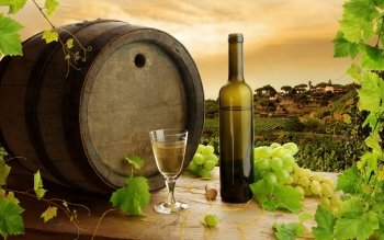 Food - Wine Wallpapers and Backgrounds ID : 346976