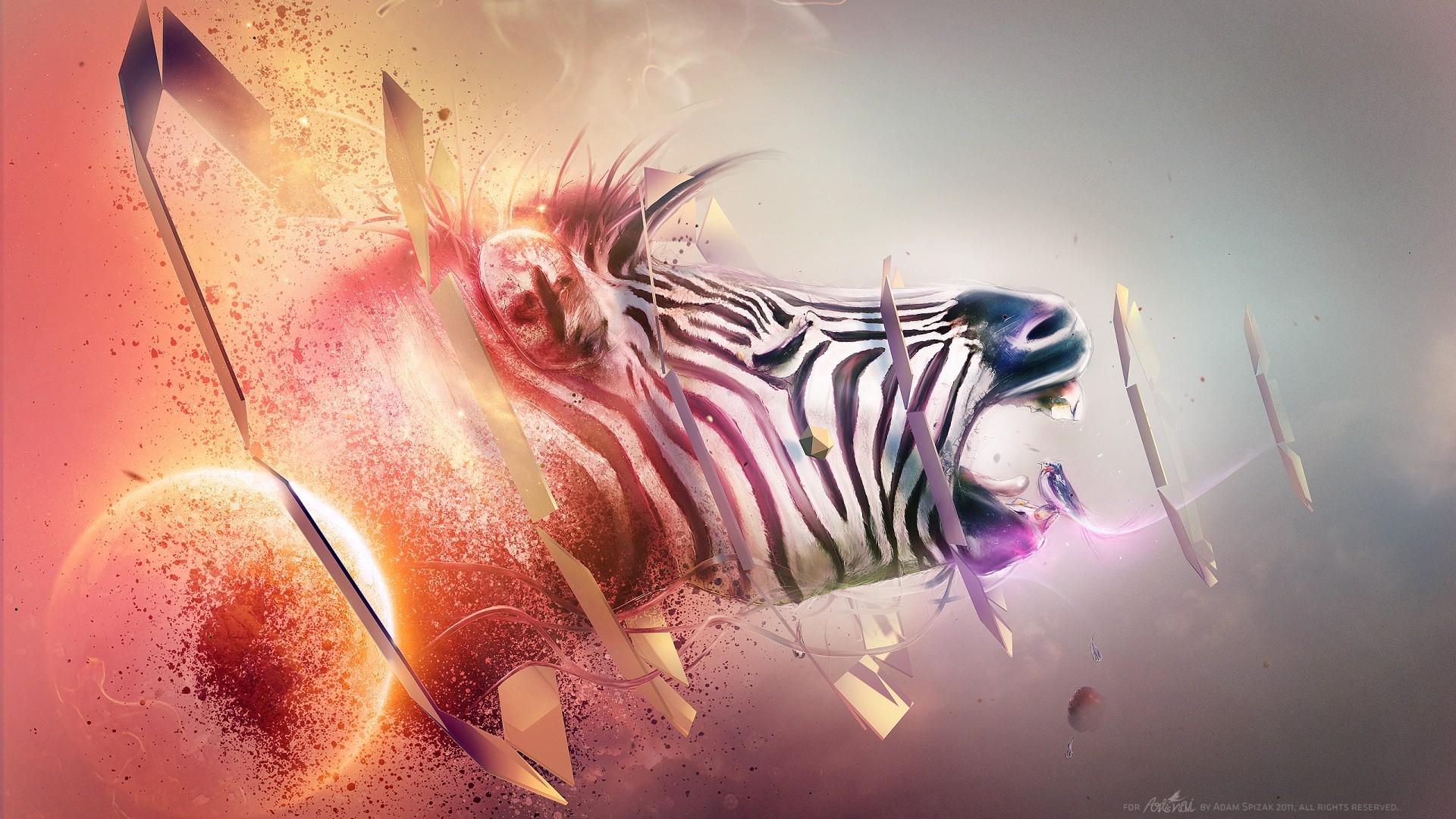 Hd Animal Wallpapers Hd Music Wallpapers: Animal HD Wallpaper