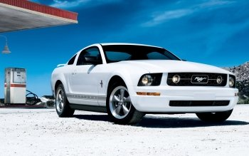 Fordon - Ford Mustang Wallpapers and Backgrounds ID : 348635