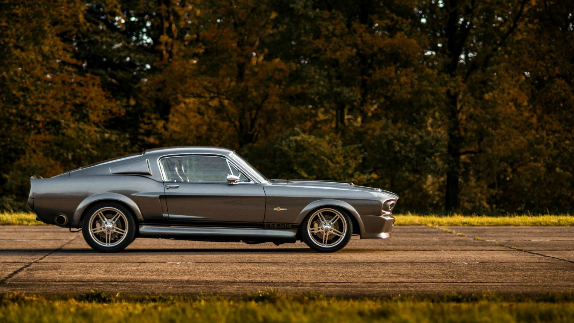 ford mustang shelby gt500 full hd wallpaper and background image