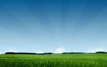 Earth - Field Wallpapers and Backgrounds ID : 350948