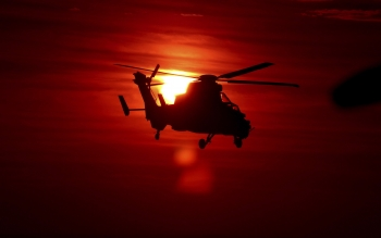 Militärt - Helicopter Wallpapers and Backgrounds ID : 352105
