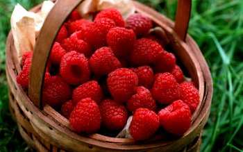 Alimento - Raspberry Wallpapers and Backgrounds ID : 354381