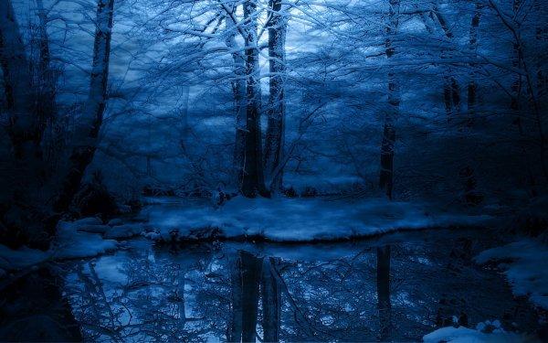 Tierra/Naturaleza Reflejo Snow Bosque Fondo de pantalla HD | Fondo de Escritorio