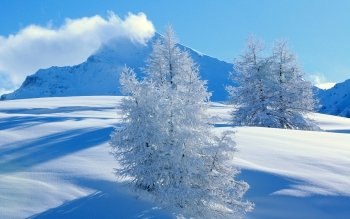 Aarde - Winter Wallpapers and Backgrounds ID : 356211