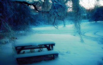 Photography - Winter Wallpapers and Backgrounds ID : 356741