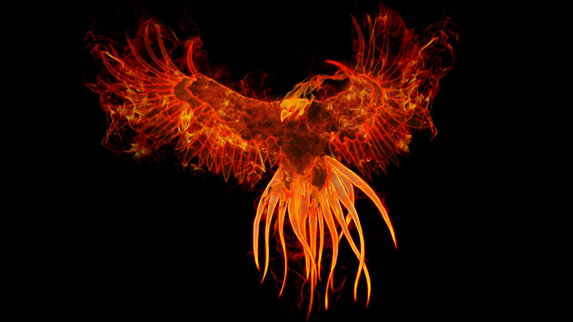 phoenix wallpaper hd - photo #6