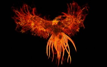 Fantasy - Phoenix Wallpapers and Backgrounds ID : 357030