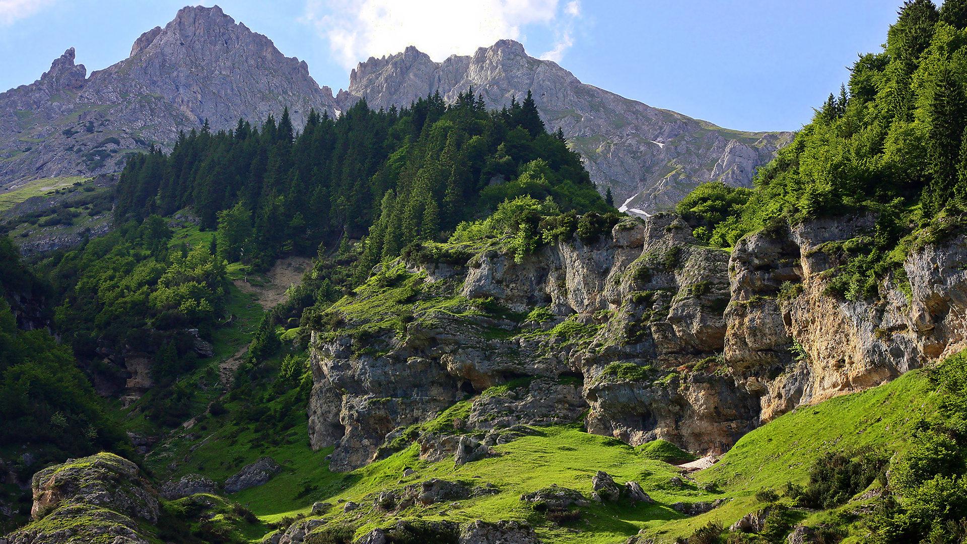 mountain and the greenary - photo #12
