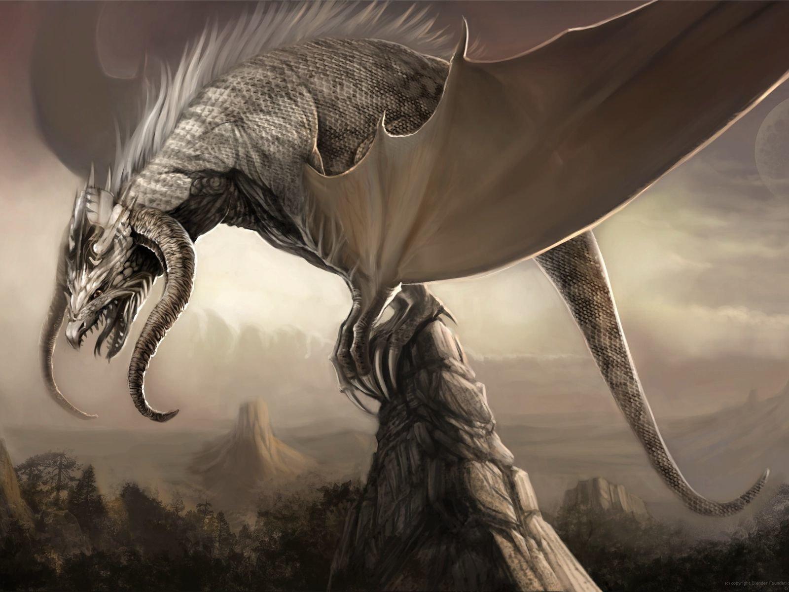 dragon wallpaper 1600x1200 - photo #20