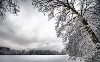 Erde - Winter Wallpapers and Backgrounds ID : 359106