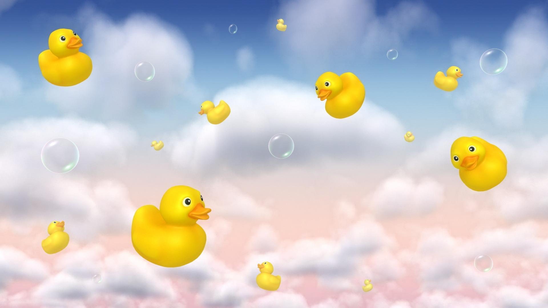 duck background