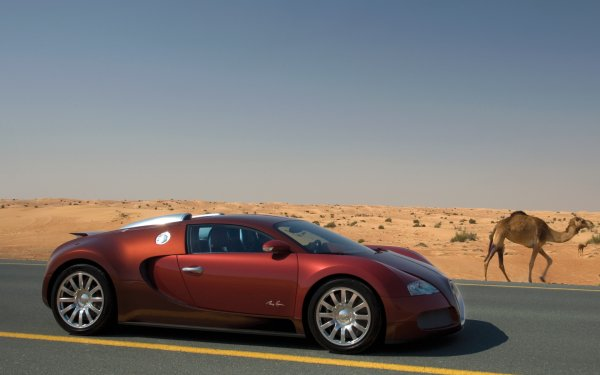 Vehicles - bugatti veyron Wallpapers and Backgrounds