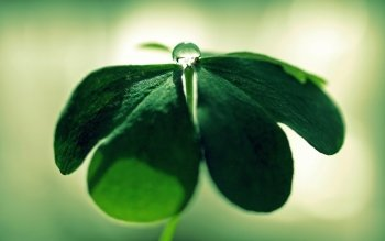 Earth - Water Drop Wallpapers and Backgrounds ID : 361388