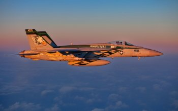 Military - Boeing F/a-18e/f Super Hornet Wallpapers and Backgrounds ID : 362286