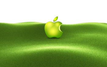 Tecnología - Apple Wallpapers and Backgrounds ID : 366190