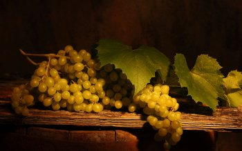 Food - Grapes Wallpapers and Backgrounds ID : 366940