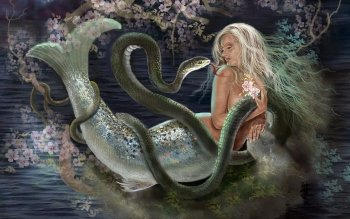 Fantasy - Mermaid Wallpapers and Backgrounds ID : 368211