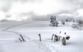 Photography - Winter Wallpapers and Backgrounds ID : 368336