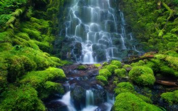 Earth - Waterfall Wallpapers and Backgrounds ID : 368482