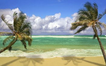 Earth - Beach Wallpapers and Backgrounds ID : 369891