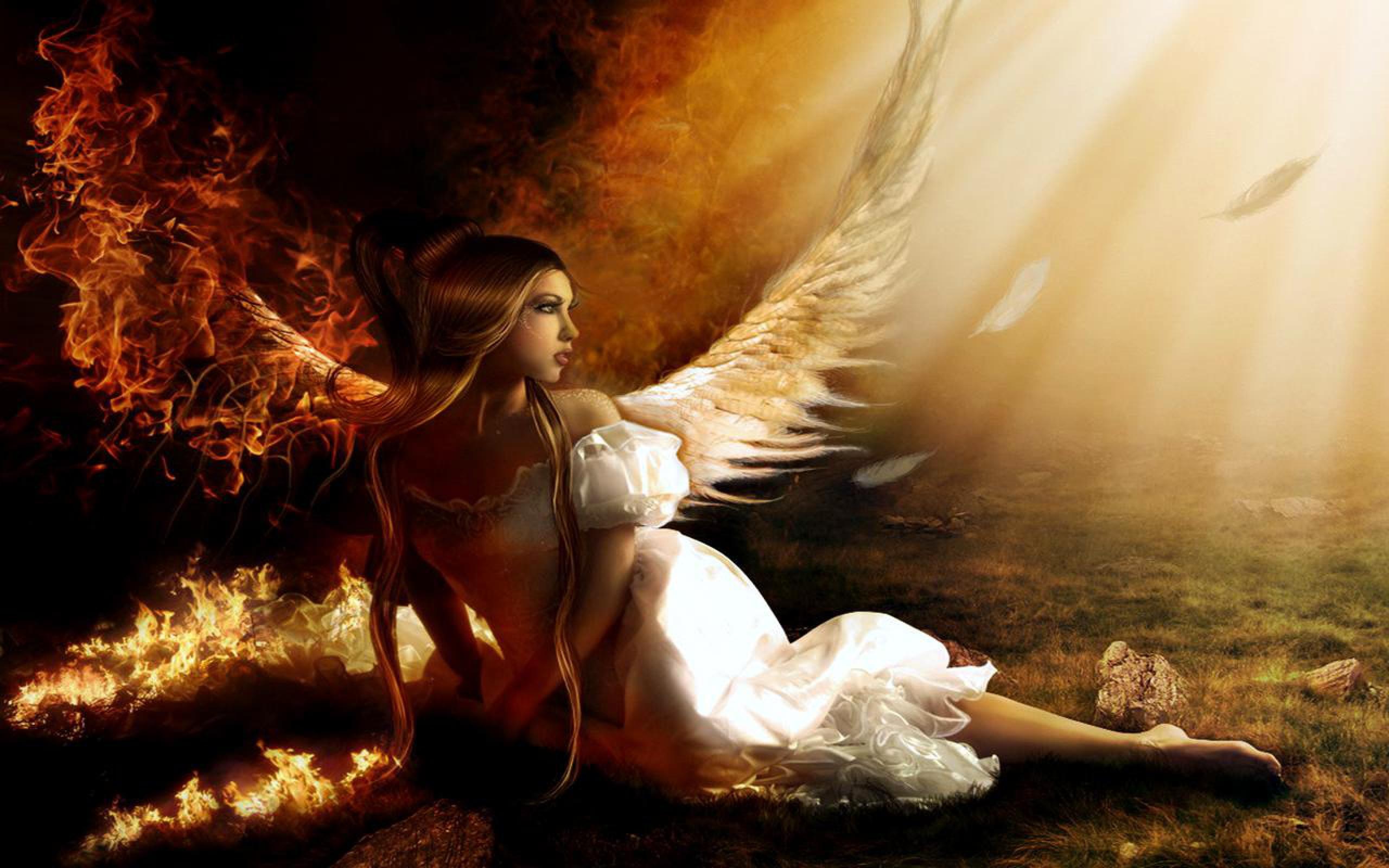 evil angel hd