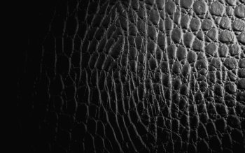 Pattern - Black Wallpapers and Backgrounds ID : 371704