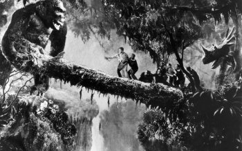 Movie - King Kong Wallpapers and Backgrounds ID : 372416