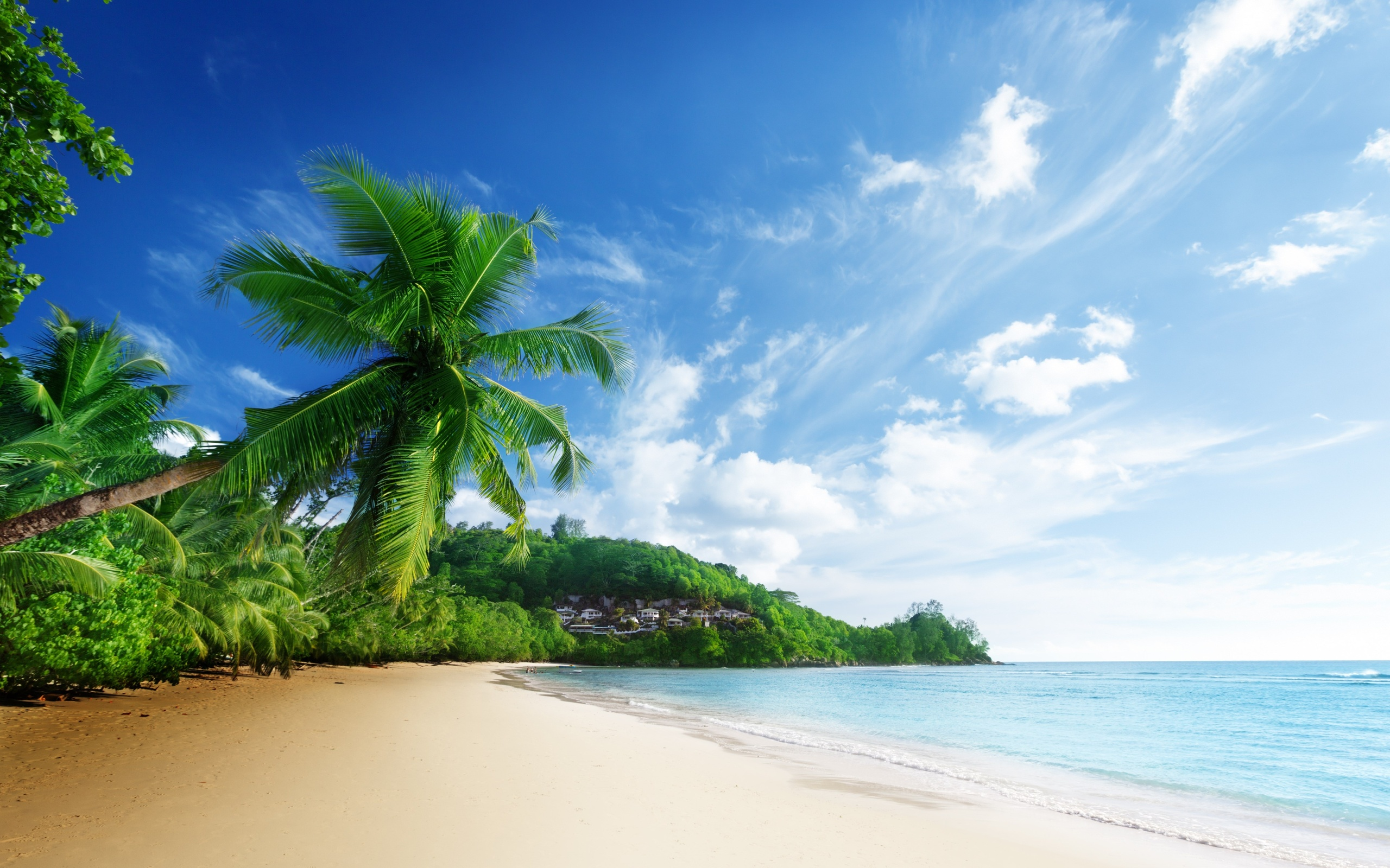 Beach full hd wallpaper and background image 2560x1600 id375194 earth beach wallpaper voltagebd Gallery