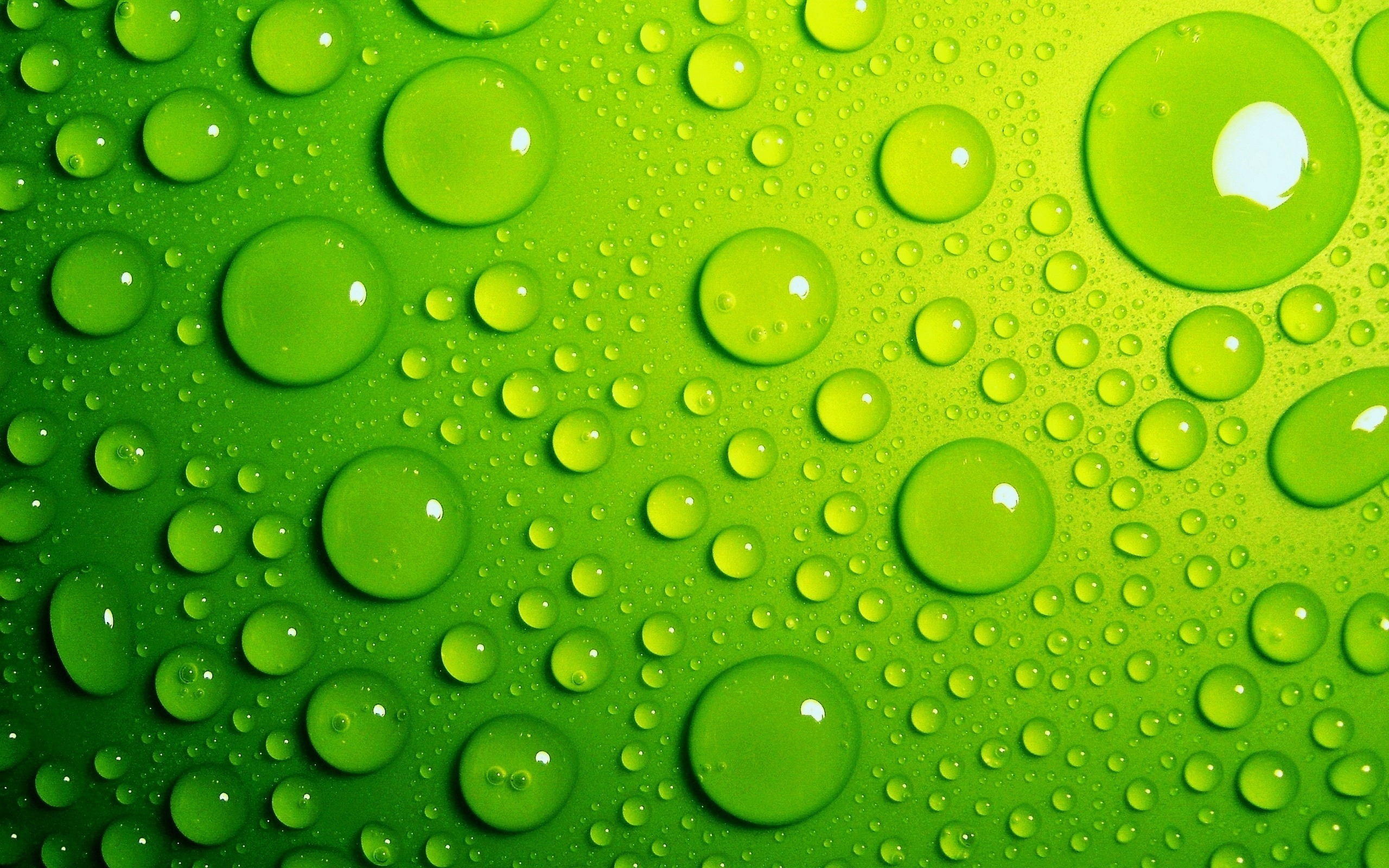 Water Drop Full HD Wallpaper and Background 2560x1600 ID376720