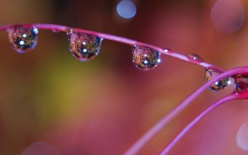 Earth - Water Drop Wallpapers and Backgrounds ID : 378034