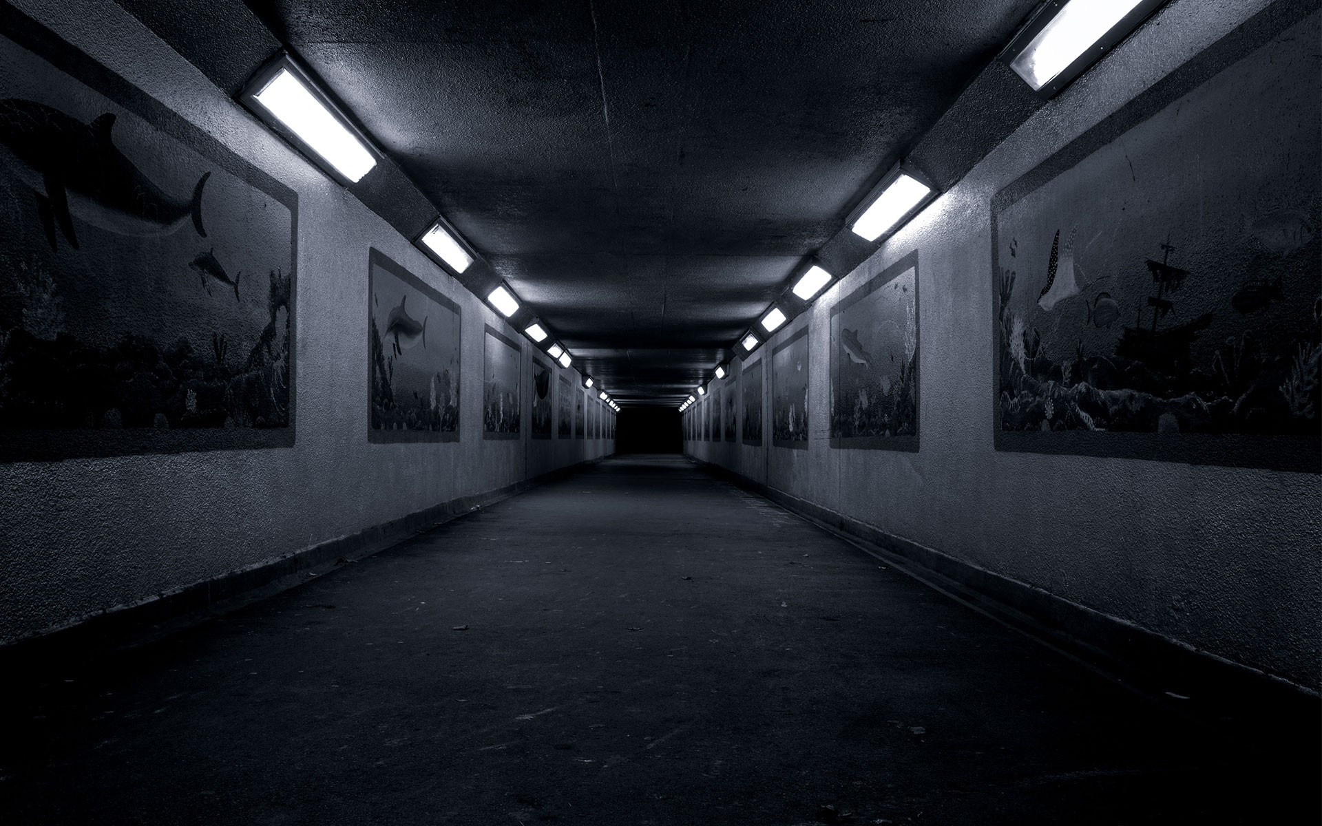 Tunnel Full Hd Wallpaper And Background Image 1920x1200