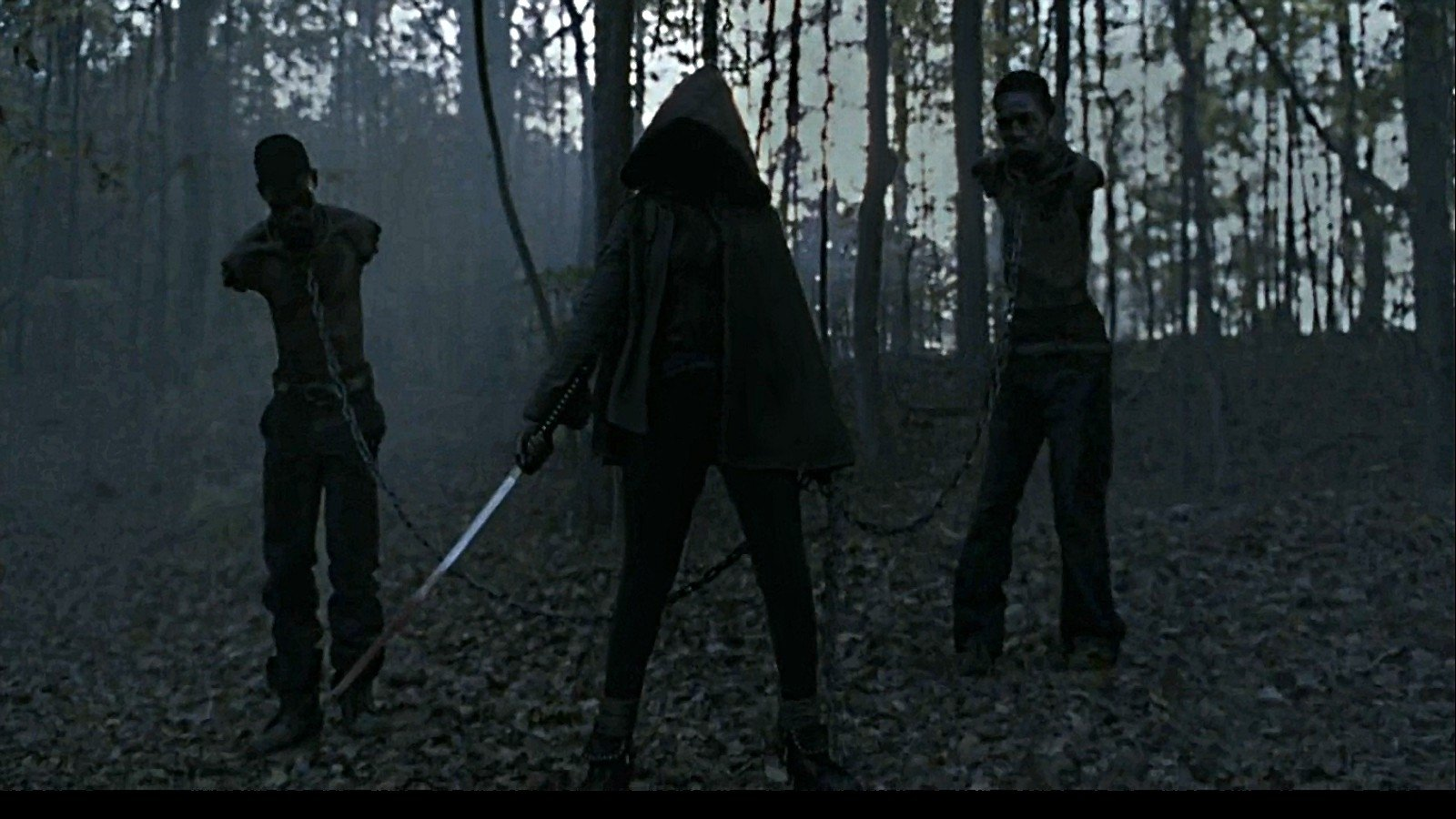 the walking dead wallpaper and background 1600x900 id