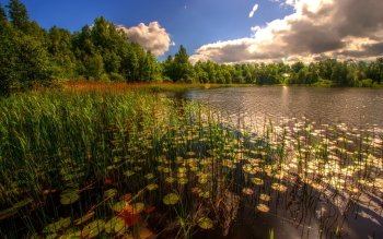 Earth - Lake Wallpapers and Backgrounds ID : 382818