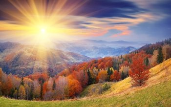 Earth - Autumn Wallpapers and Backgrounds ID : 384284