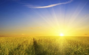 Earth - Sunbeam Wallpapers and Backgrounds ID : 384937