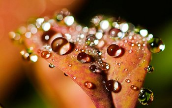 Earth - Water Drop Wallpapers and Backgrounds ID : 385086