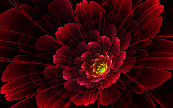 Artistic - Flower Wallpapers and Backgrounds ID : 386171