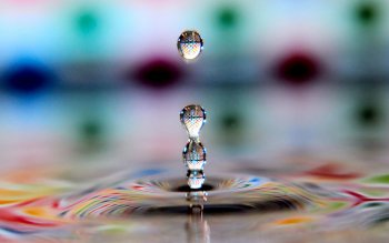 Photography - Water Drop Wallpapers and Backgrounds ID : 390251