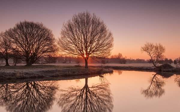 Tierra/Naturaleza Reflejo Sol Árbol Cielo Agua Fondo de pantalla HD | Fondo de Escritorio