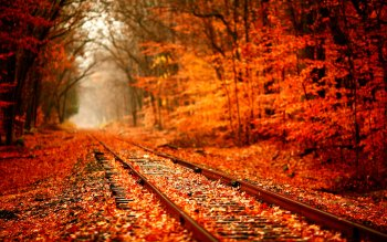 Man Made - Railroad Wallpapers and Backgrounds ID : 394234