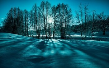 Earth - Winter Wallpapers and Backgrounds ID : 396410