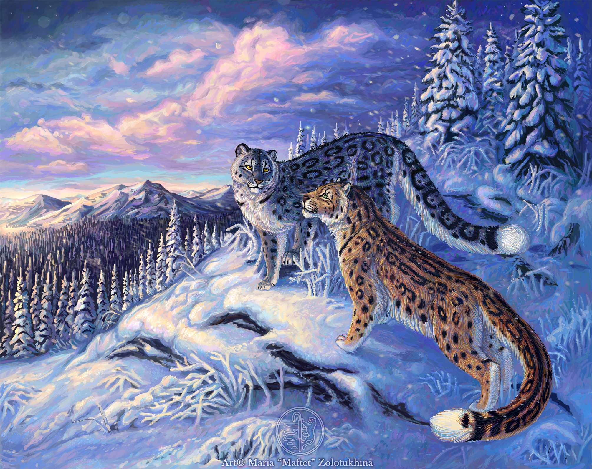 Snow Leopard Full HD Wallpaper and Background 2010x1593