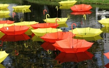 Fotografie - Umbrella Wallpapers and Backgrounds ID : 397723