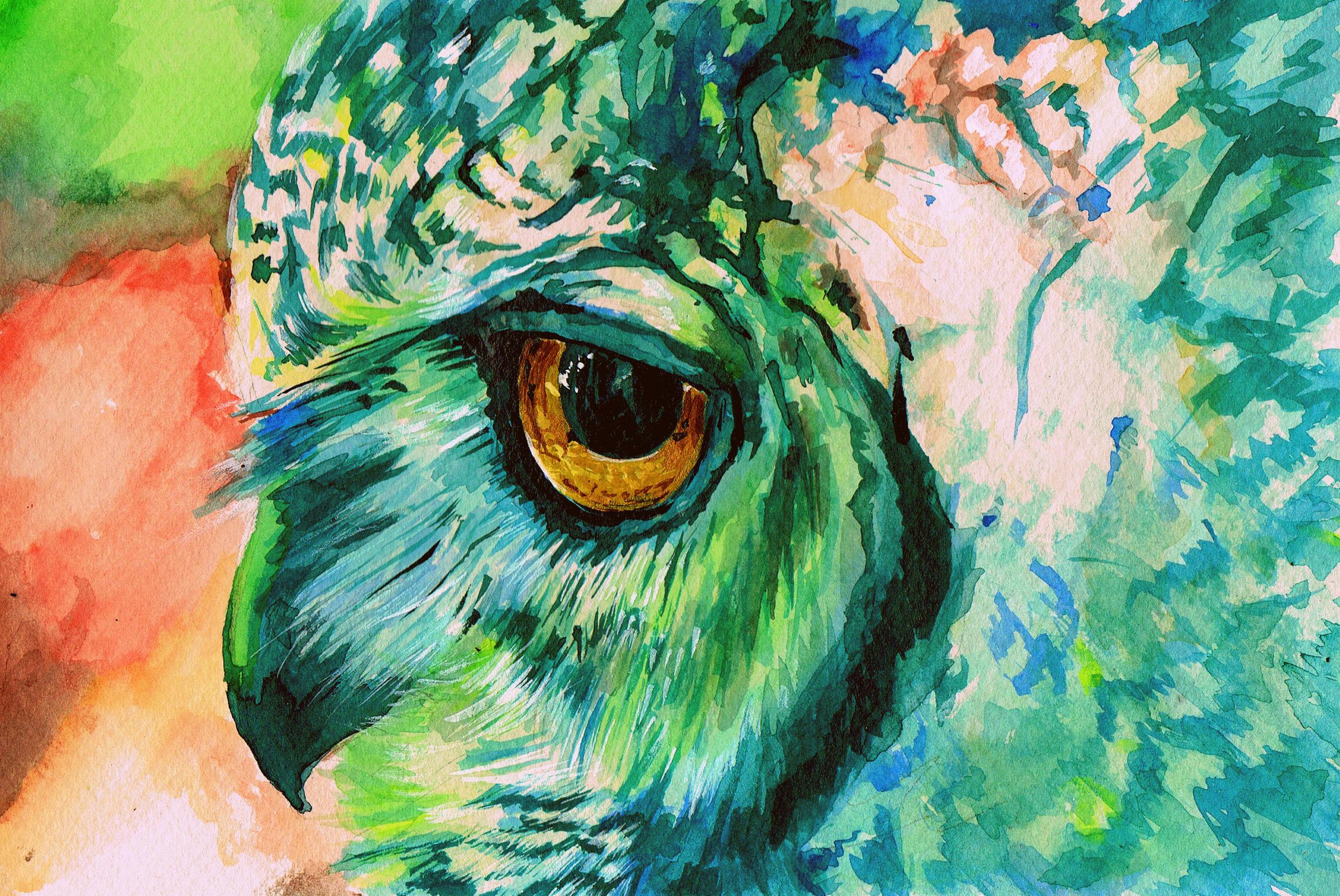 Owl HD Wallpaper | Background Image | 2544x1701 | ID ...  Owl HD Wallpape...