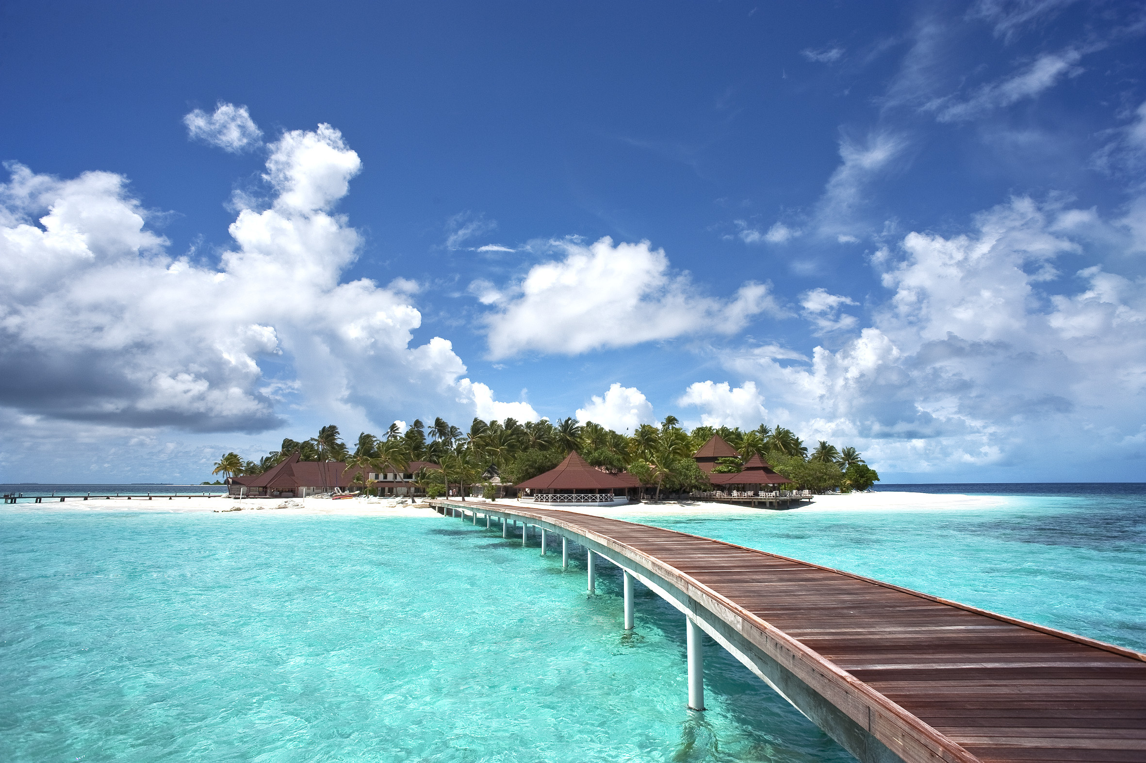Tropical Hd Wallpaper Background Image 2362x1572 Id400074